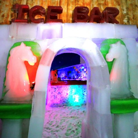 Ice Bar in SnowPark Goa